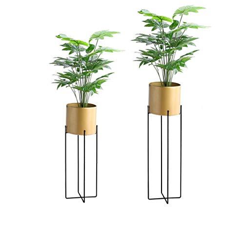 Support pour étagère à Fleurs Support pour Plantes Support pour présentoir Échelle de Fer Balcon Chambre Jardin Taille Or 22.5x70 / 25.5x85 Cm (LxH)