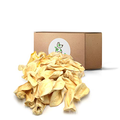 Nature Gnaws Cow Ears for Dogs - Premium Natural Beef Chews - Simple Long Lasting Dog Treats for Large Dogs and Aggressive Chewers - Rawhide Free (25 Count) Bulk