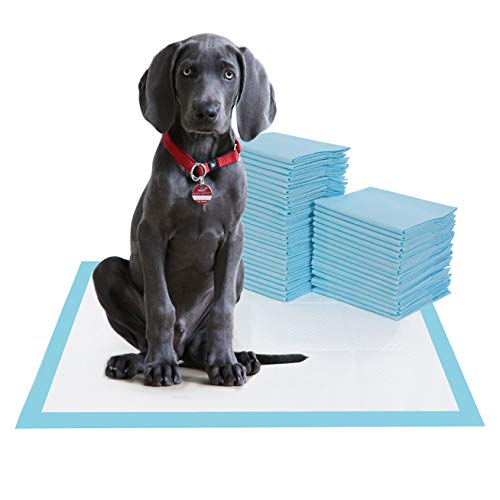 BESTLE Large Pet Training and Puppy Pads Pee Pad for Dogs 24'x24'-80 Count Super Absorbent & Leak-Proof