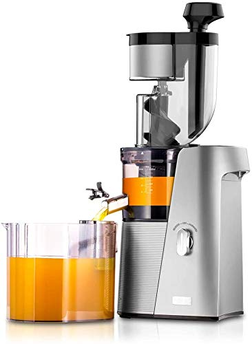 SKG A10 Slow Masticating Juicer Wide Chute Cold Press Anti-oxidation BPA Free High Volume Easy to Clean - Silver