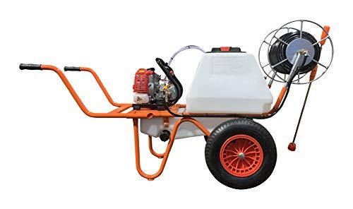 Bricoferr PT64052-2 Carretilla Sulfatadora Motor a Gasolina 2 Tiempos y Capacidad 80 litros