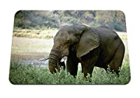 22cmx18cm マウスパッド (象牙アフリカ) パターンカスタムの マウスパッド