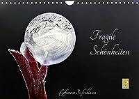 Fragile Schoenheiten - Gefrorene Seifenblasen (Wandkalender 2022 DIN A4 quer): Gefrorene Seifenblasen ... faszinierende Schoenheiten (Monatskalender, 14 Seiten )