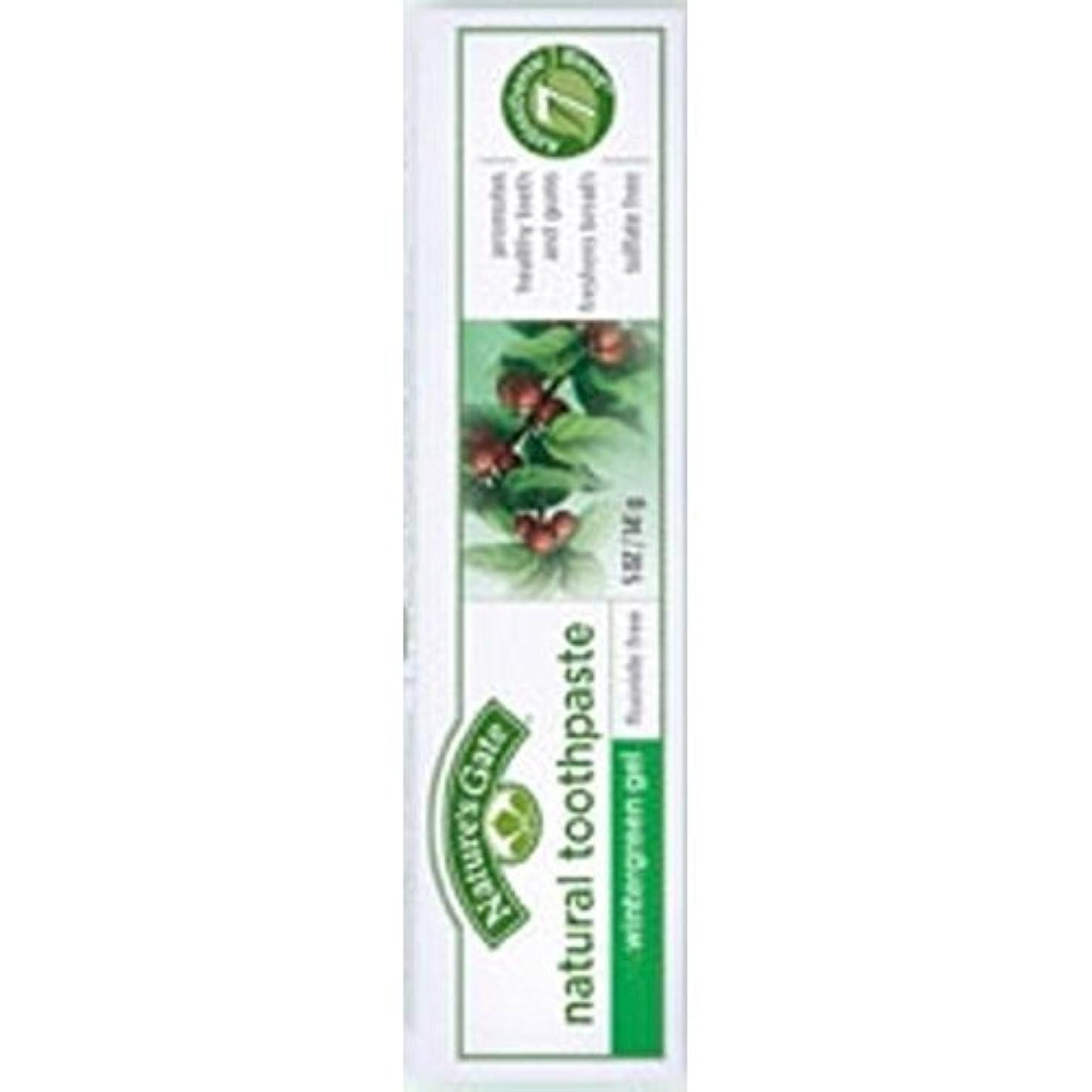 画家ご注意可動式Nature's Gate Natural Toothpaste Gel Flouride Free Wintergreen - 5 oz - Case of 6 by Nature's Gate [並行輸入品]