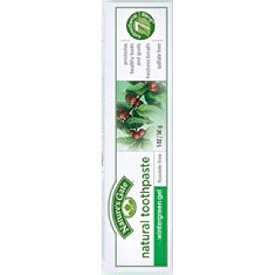 レオナルドダ説明的肌寒いNature's Gate Natural Toothpaste Gel Flouride Free Wintergreen - 5 oz - Case of 6 by Nature's Gate [並行輸入品]