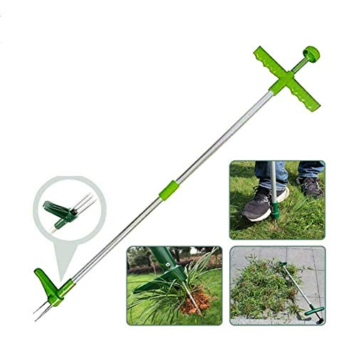 Affordable ZHAOXX Standing Plant Root Remover Weed Puller Manual Weeders Root Killer Garden Hand Too...