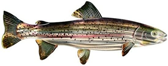 product image for Next Innovations WA3DMTROUT CB Trout Refraxions 3D Wall Art