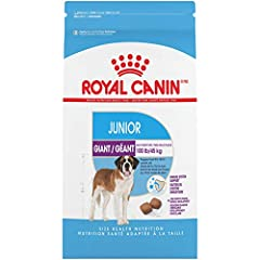 Royal Canin Giant Junior dry dog food is tailor-made for puppies between 8 and 18-24 months with an expected adult weight of over 100 lbs Meets the nutritional needs of extra-large puppies in their second growth stage (after 8 months) Supports muscle...