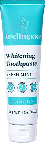 Wellnesse: Whitening Toothpaste - Fresh Mint - 1 Tube, 4 oz - Clean...
