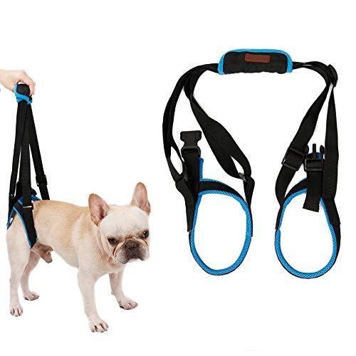 Tineer Dog Lift Arnés para piernas traseras Soporte para Mascotas Arnés Cabestrillo Trasero Ayuda Piernas débiles Levántate Soporte Arnés de Equilibrio para Artritis Rehabilitación Perros (L)