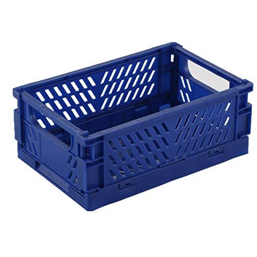 BAREGO keeeper Stabile Profi-Klappbox Faltbox Kunststoff Box Kiste (Trompete, Dunkelblau)