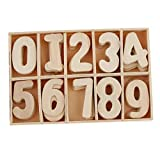 R H lifestyle Unpainted Wooden Number Craft Numbers with Storage Tray Kids Learning Toy, Scrapbooking Embellishment, Home Decorations -60 Piece Set