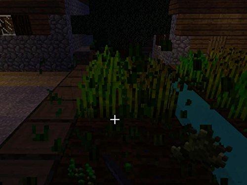 The Village Next Door