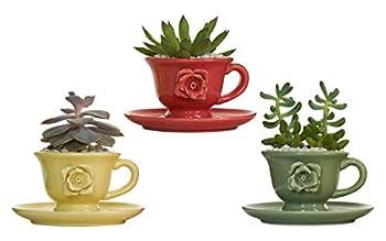 Best teacup flower pots Reviews