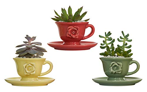 BABSY Succulent Planter Pots with Drainage Hole for Cactus, Herbs, Flowers (Teacup Red, Yellow, Green)