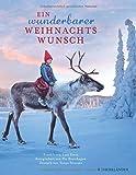 Ein wunderbarer Weihnachtswunsch - Lori Evert