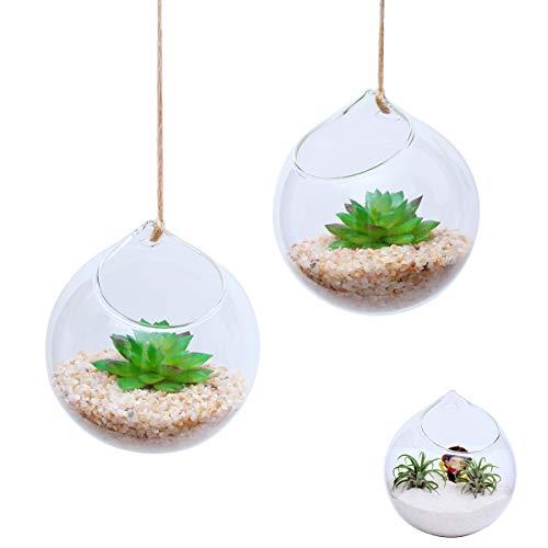 Ivolador Set of 2PCS 4.7 Inches Hanging Planter Glass Terrarium Container Air Plant Holder Succulents Globe Shape Home Garden Decor