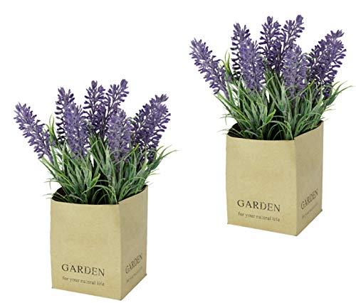 Flair Flower Künstlicher Lavendel im Papiertopf Frühjahrsdeko Kunstblumen Sommerblumen Blumentöpfe Dekoblumen Dekopflanzen gefälschte Seidenblumen Plastikblumen 2er Set, violett, 20x10x10 cm
