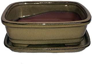 Ceramic Bonsai Pot/Attached Saucer - Mustard - 8