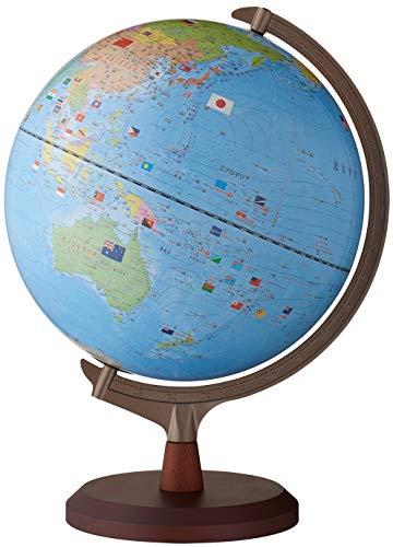 レイメイ藤井 地球儀 国旗イラスト・よみがな付き 行政タイプ 球形30cm OYV328