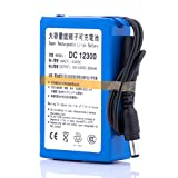 ABENIC Super Polymer Rechargeable 3000mAh Lithium ion Battery for Fishing Finder,Guitar Spectra S2 and More DC 12V DC12300 Blue