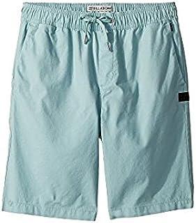 ビラボン Billabong Kids キッズ 男の子 ショーツ 半ズボン Dark Ozone Larry Layback Shorts [並行輸入品]