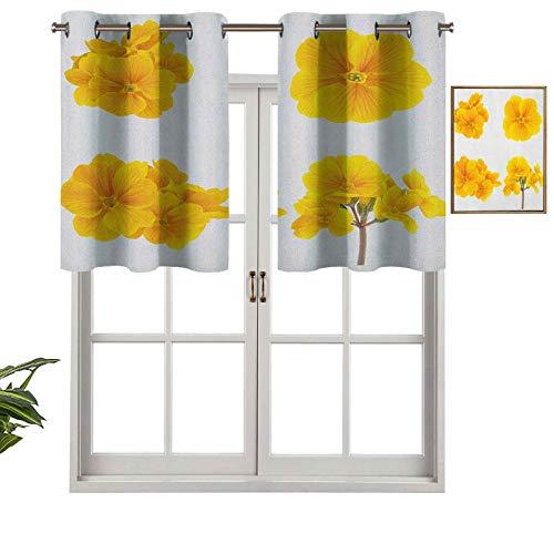 Hiiiman Cortinas opacas con cenefas antirayos UV, colección temática de jardinería, con pequeñas flores de primula, juego de 2, 42 x 24 pulgadas para interior, comedor o dormitorio