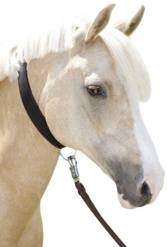 USG Halsriemen, Pony