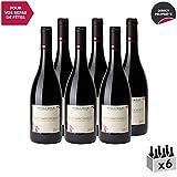 Nuits-Saint-Georges Rouge 2017 - Arnaud Boué - Vin AOC Rouge de Bourgogne - Cépage Pinot Noir - Lot de 6x75cl