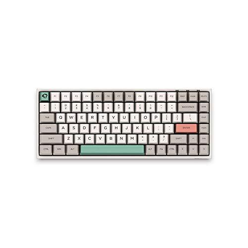 EPOMAKER AKKO 3084 9009 Retro 84-Key Tenkeyless Mechanical Keyboard with Cherry MX Switch, N-Key Rollover, 85% PBT Keycaps, Type C Port for Gamers (Cherry Brown Switch, 3084-9009)