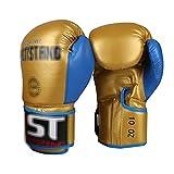 Diwa Guantes de boxeo universales para hombre y mujer, para principiantes, Taekwondo/Sanda, para saco de boxeo de entrenamiento, 8 onzas/10 onzas (color: azul, tamaño: 8 onzas)