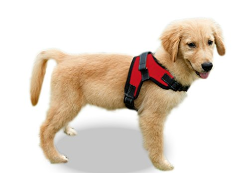 Copatchy No Pull Reflective Adjustable Dog Harness with Handle (Medium Red)