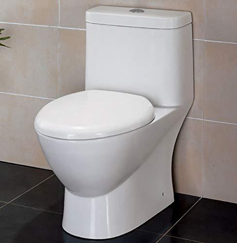 EAGO TB346 Modern Dual Flush Eco-Friendly Ceramic Toilet, 1-Piece