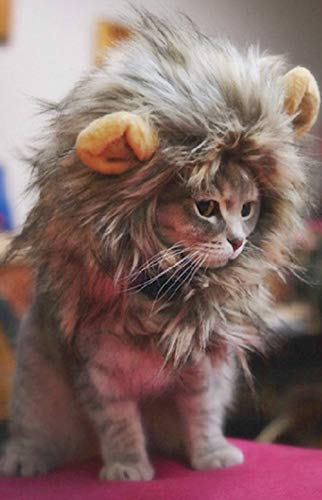 SNIK-S Cat Wigs Lion Mane Wig with Ears- Fancy Costume Hair Lion Hat for Halloween and Cosplay Party (L)