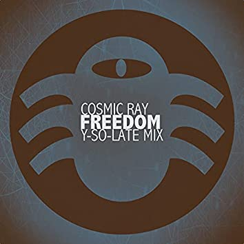 Freedom (Y-So-Late Mix)