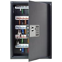 Pavo 8033911 - Caja para llaves de alta seguridad (capacidad para hasta 50 unidades), gris