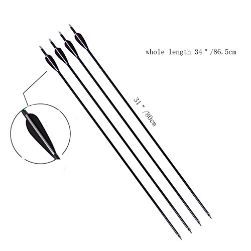 PG1ARCHERY 30 Inch Archery Fiberglass Arrows, 12 Pack Hunting Target Practice Arrow with Removable Tips Fletching 3