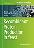 Recombinant Protein Production in Yeast (Methods in Molecular Biology (1923), Band 1923) - Brigitte Gasser