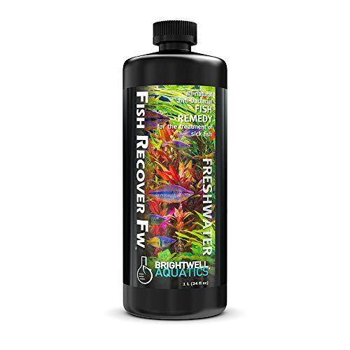 Brightwell Aquatics Fish Recover FW Natural Herbal Medication for Open Sores, 1 L