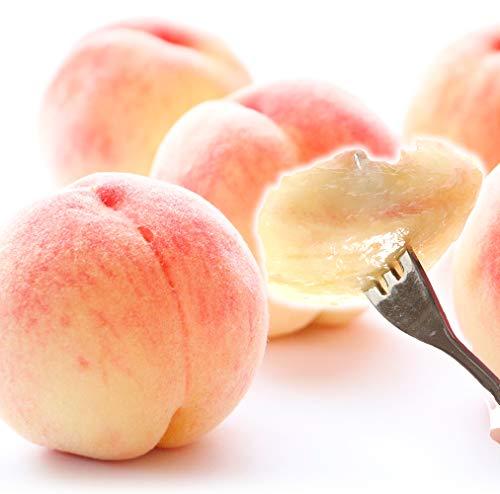 国華園 和歌山産 紀州白鳳 約2kg もも 桃 白桃 果物 食品