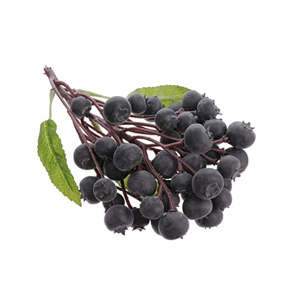 YARNOW Artificial Fruit Blueberries Ornament Christmas Berry Stems Fruit Model Photography Prop Festival Holiday Kichen Decoration