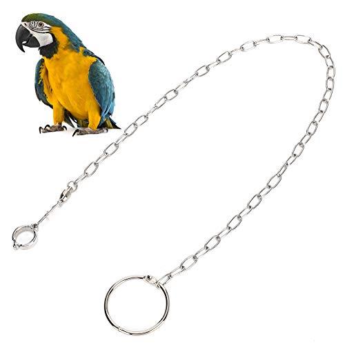 Yissone Parrot Foot Chain Metal Birds Split Anklet Ring Arnés de Acero Inoxidable para Mascotas Grandes Entrenamiento de Guacamayos Al Aire Libre Vuelo 7Mm