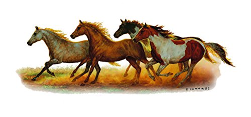 horse decals for cars - 8