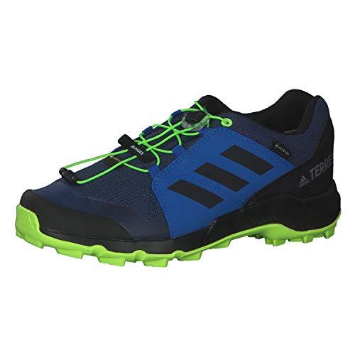 adidas Terrex GTX K, Chaussure de Trail, Tech Indigo/Core Black/Signal Green, 28 EU