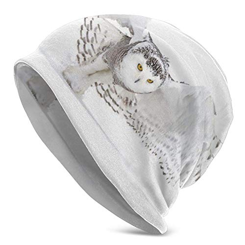 BGDFN Gorro de Punto de búhos Blancos Gorros de Gorrita Tejida cálidos Gorros de Calavera con puños Suaves elásticos Gorro Diario para Unisex