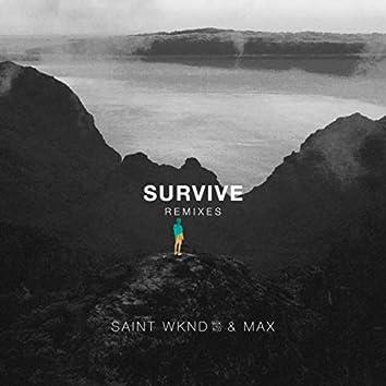 Survive (Remixes)