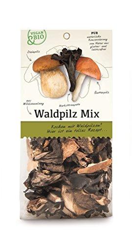 Waldpilz-Mix getrocknet - bio und vegan - 30 g
