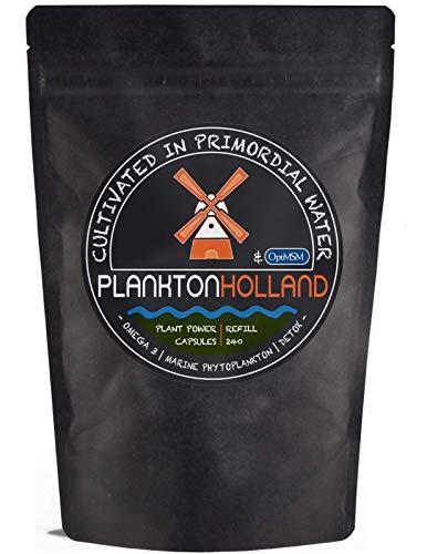 MSM Marine Phytoplankton 240 Capsules   500mg   Maintenance Dosage   100% Pure   Omega-3   Sulfur   Vegan   Detox   Refill