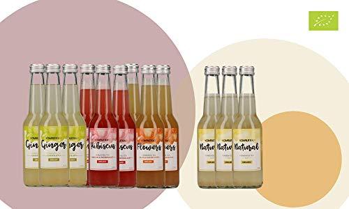 KOMBUTXA TE KOMBUCHA BEBIDA ECOLOGICA - 12x275ml te fermentado bio organic tea bebida energetica sin azucar añadido (Pack mix 9ud + 3ud Natural (gratis))
