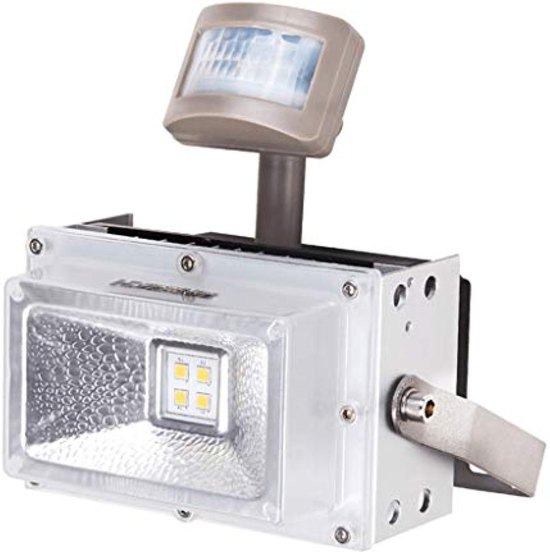 Strahler Mit,LED Sensor Auenleuchte Superhelle Werkslicht Werkstatt Beleuchtung Scheinwerfer Wasserdicht (Farbe   Positive Weiß light-30W)